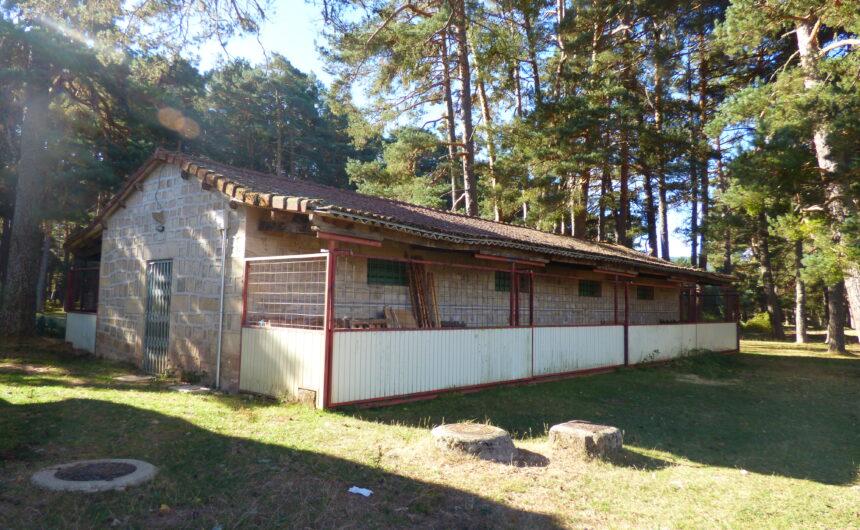Campamento Raso de la Nava Ayuntamiento Covaleda Soria