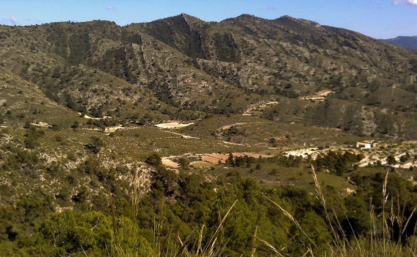 Sierra de Umbría Ruta PR 77 Covaleda Soria Ayuntamiento