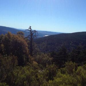 Ruta Pico del Hornillo