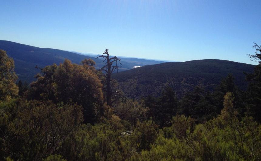 Ruta del Pico Hornillo Ayuntamiento de Covaleda Turismo