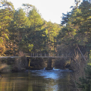 Ruta Puente la Arenilla
